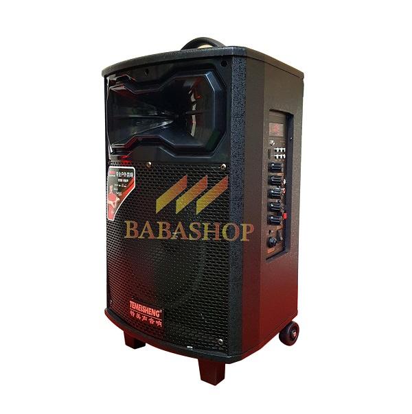 Loa Karaoke Di Động Temeisheng QX-0831