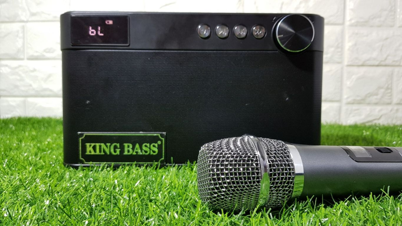 Loa karaoke mini KingBass Q5