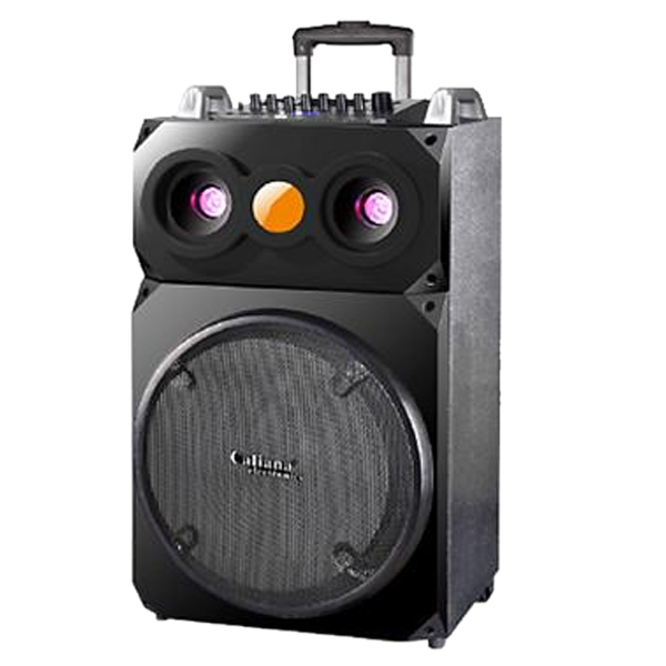 CALIANA WD 15 Loa kéo bass 4 tấc