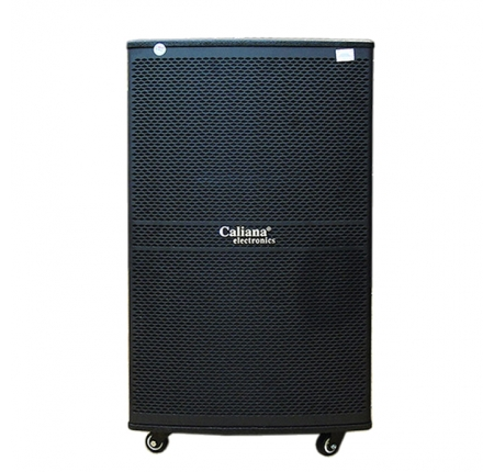 CALIANA WD 15A  Loa kéo bass 4 tấc